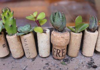 cool-diy-mini-magnet-garden-5
