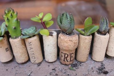 cool-diy-mini-magnet-garden-5