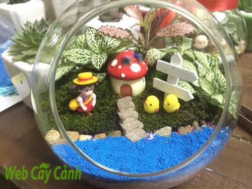 Terrarium ngôi nhà nhỏ trên thảo nguyên