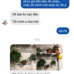 chi-dung-hn