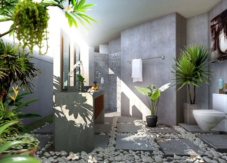 Hướng dẫn bố trí cây xanh hợp phong thủy cho ngôi nhà của bạn ...